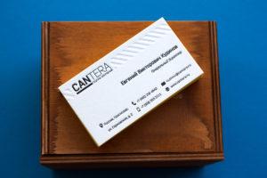 Заказать дизайн визиток директора