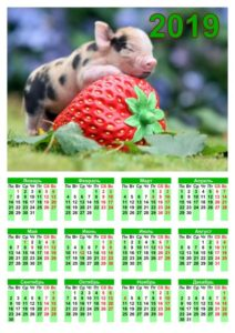 Календари на 2019 год фото